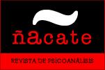Revista Ñácate